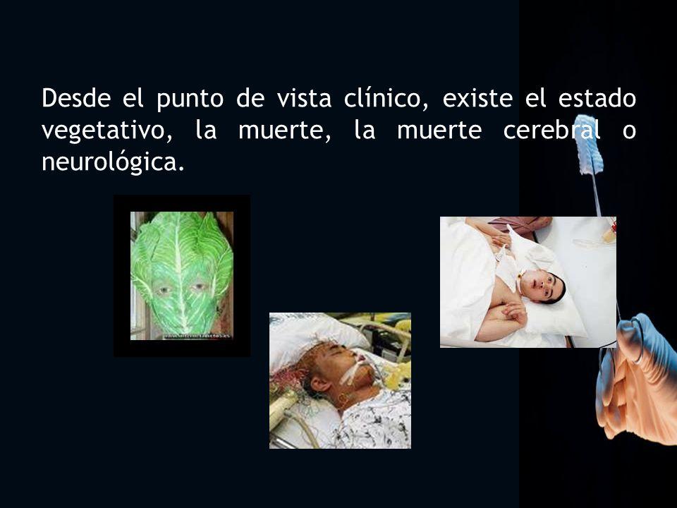 6 Desde el punto de vista clínico, existe el estado vegetativo, la muerte, la muerte cerebral o neurológica.