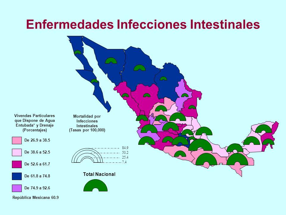 Enfermedades Infecciones Intestinales