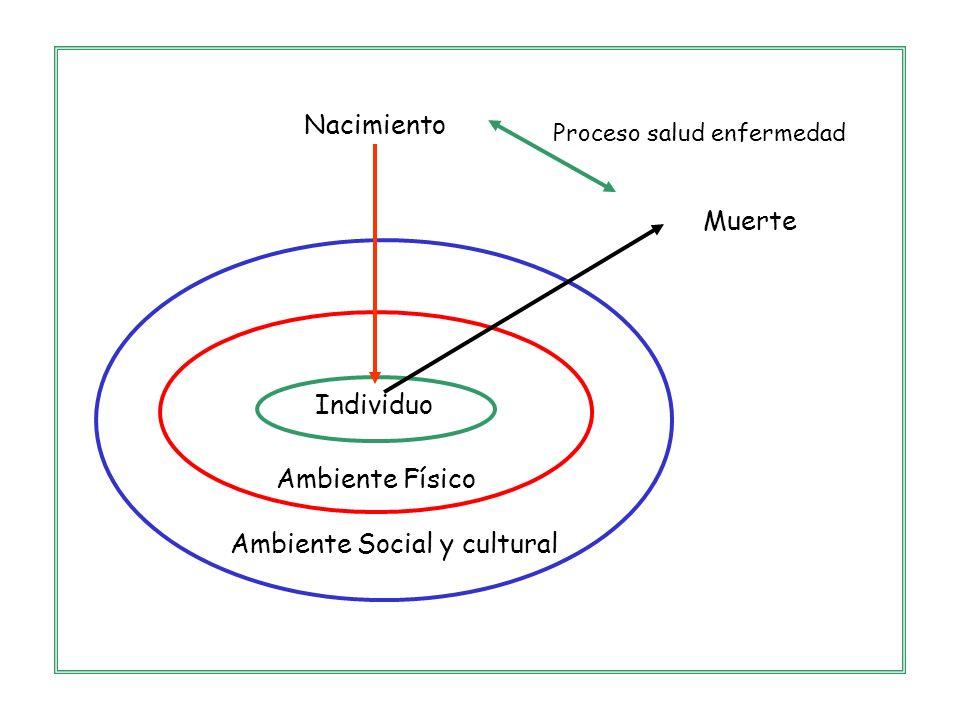 Ambiente Social y cultural