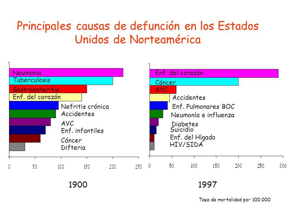 Principales causas de defunción en los Estados Unidos de Norteamérica