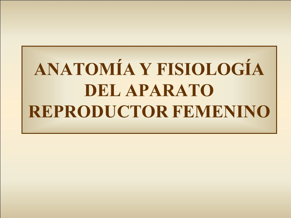 ANATOMÍA Y FISIOLOGÍA DEL APARATO REPRODUCTOR FEMENINO - ppt video ...