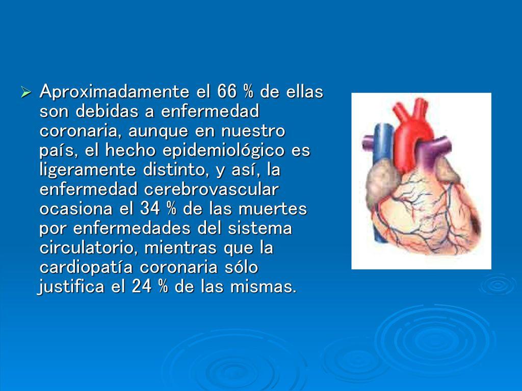 Excelente Anatomía Y Fisiología Del Ppt Accidente Cerebrovascular ...