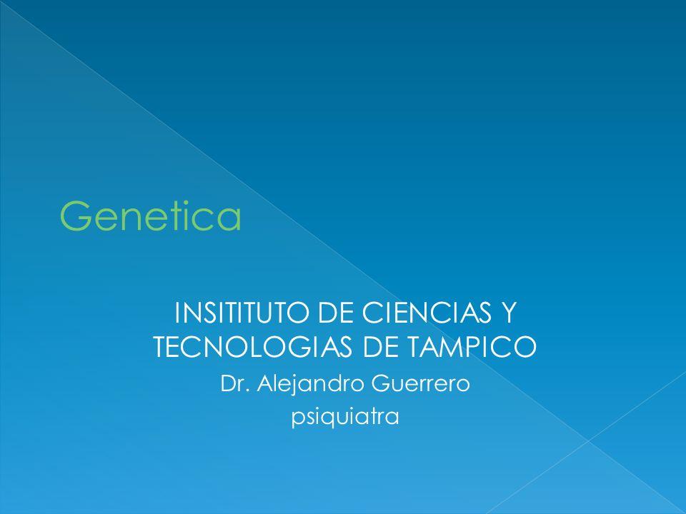 INSITITUTO DE CIENCIAS Y TECNOLOGIAS DE TAMPICO