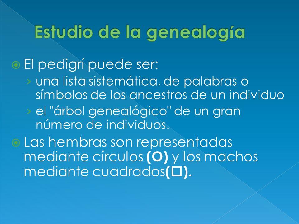 Estudio de la genealogía