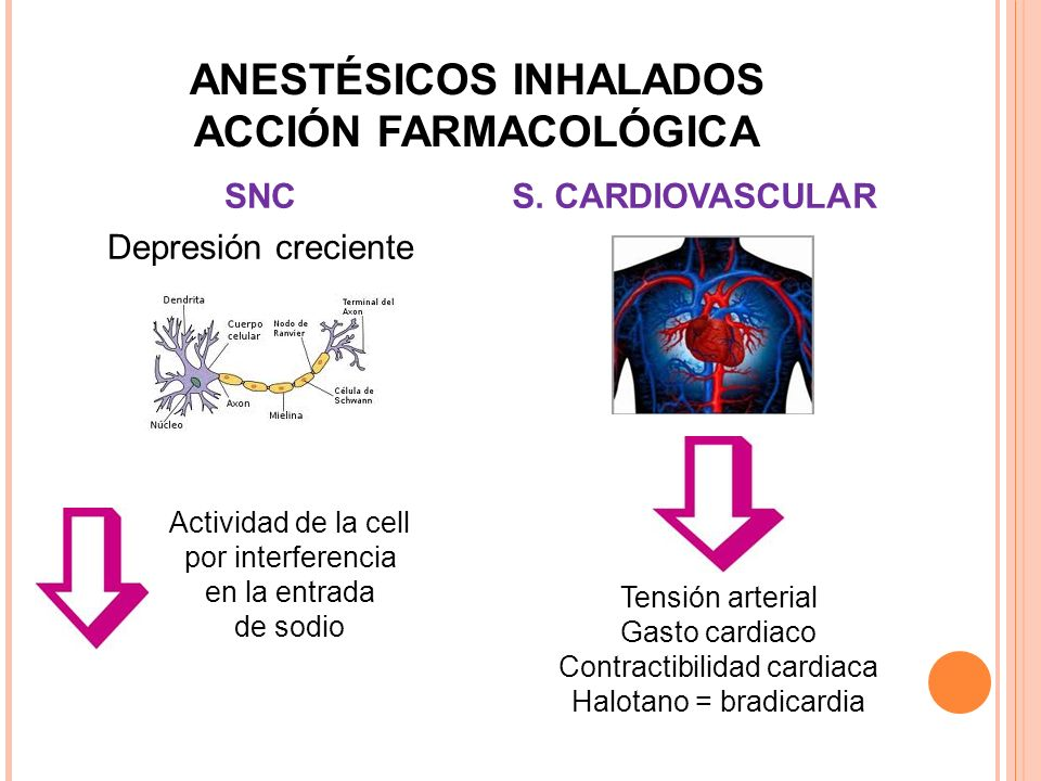ANESTÉSICOS INHALADOS ACCIÓN FARMACOLÓGICA