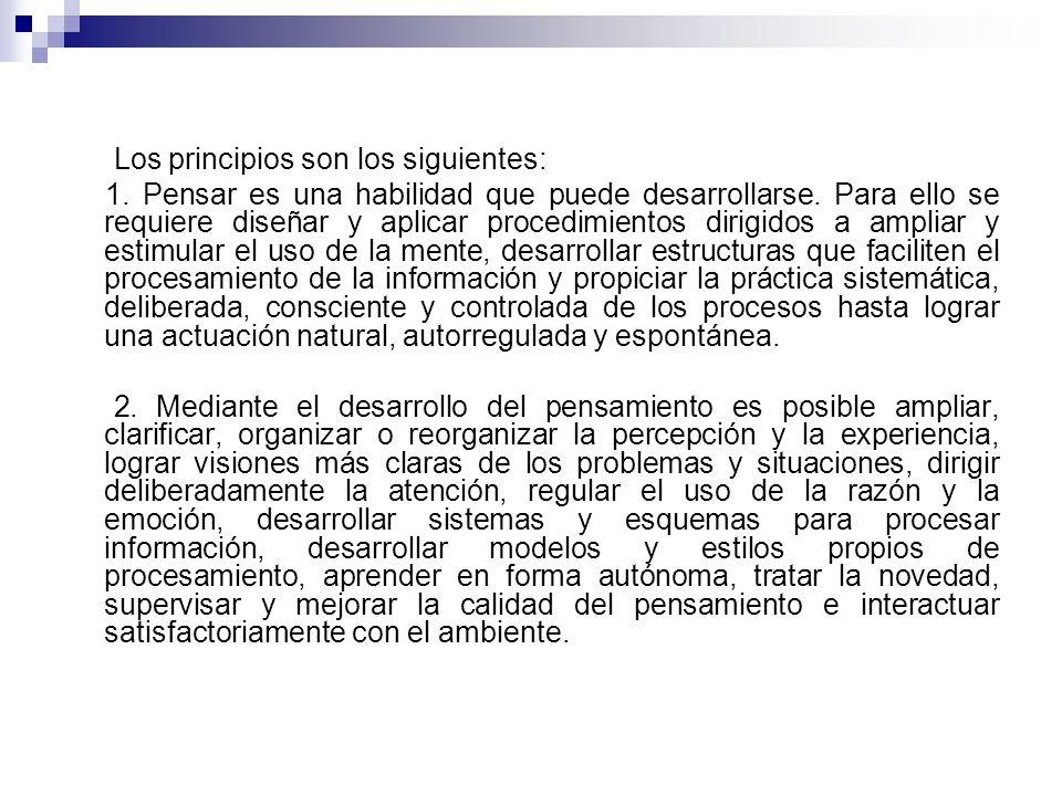 Los principios son los siguientes: