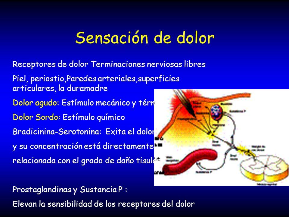 Sensación de dolor Receptores de dolor Terminaciones nerviosas libres