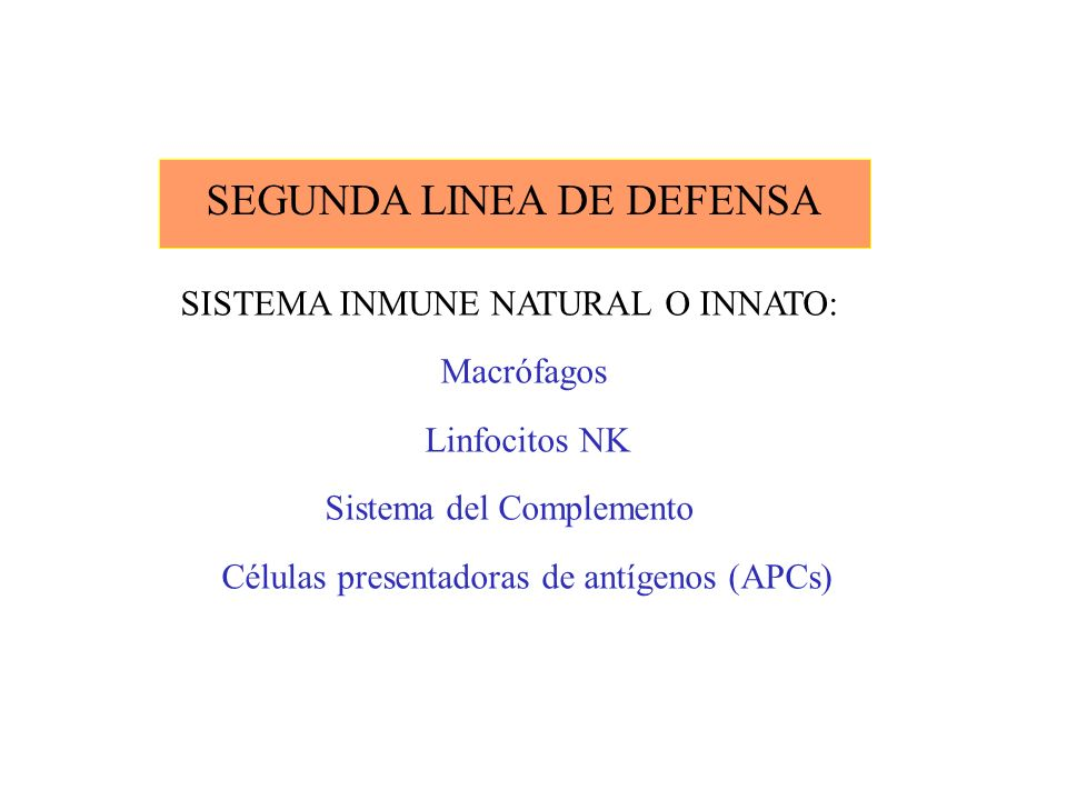 SEGUNDA LINEA DE DEFENSA