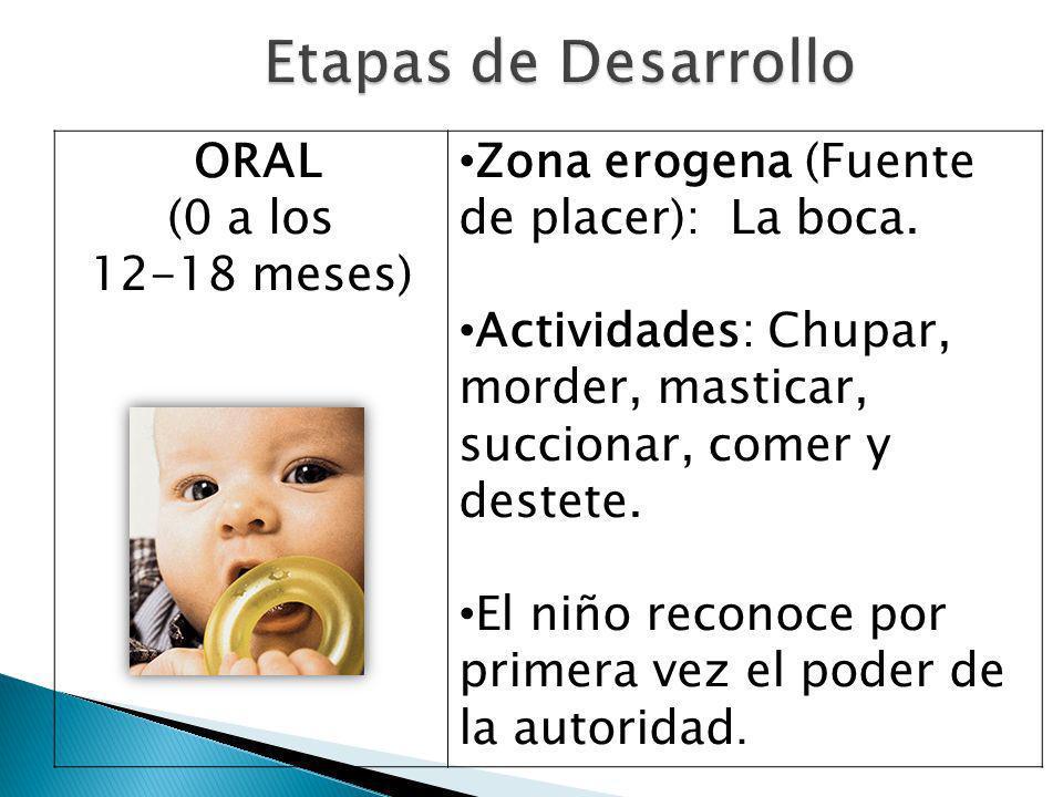 Etapas de Desarrollo ORAL (0 a los 12-18 meses)