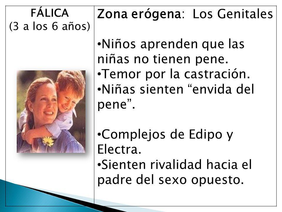 Zona erógena: Los Genitales