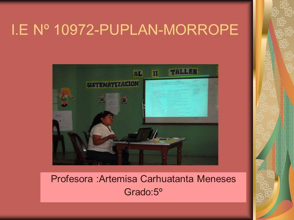 Profesora :Artemisa Carhuatanta Meneses Grado:5º