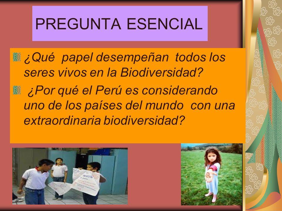 PREGUNTA ESENCIAL ¿Qué papel desempeñan todos los seres vivos en la Biodiversidad