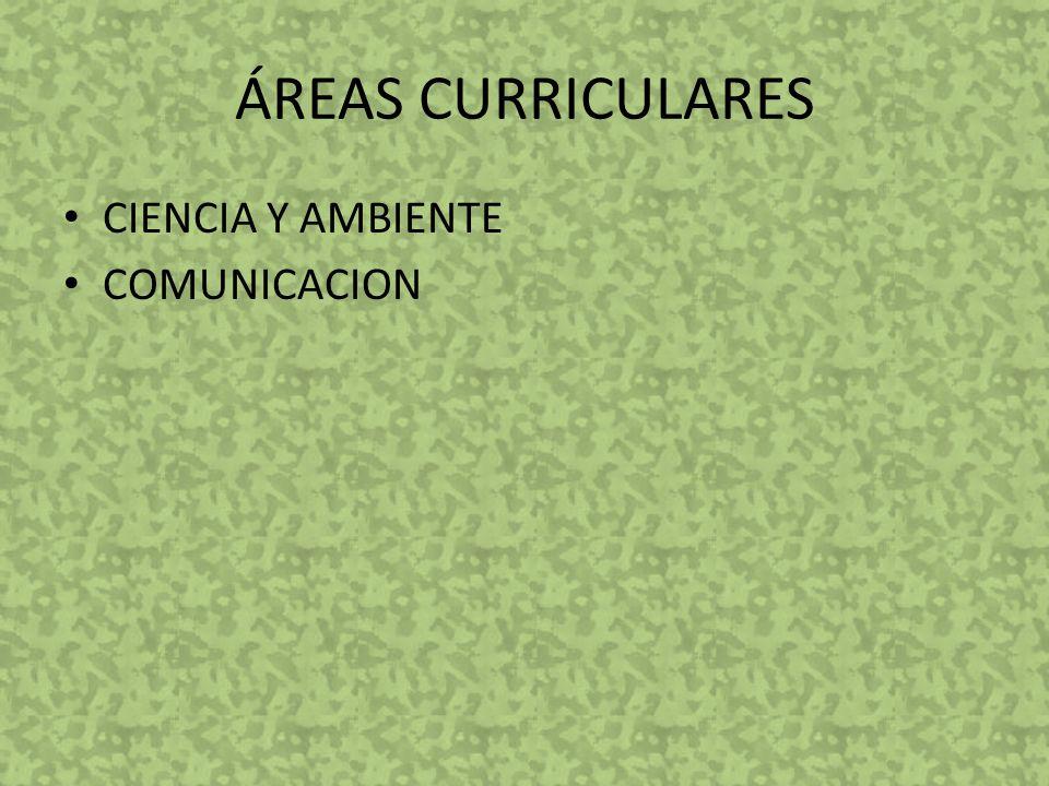 ÁREAS CURRICULARES CIENCIA Y AMBIENTE COMUNICACION