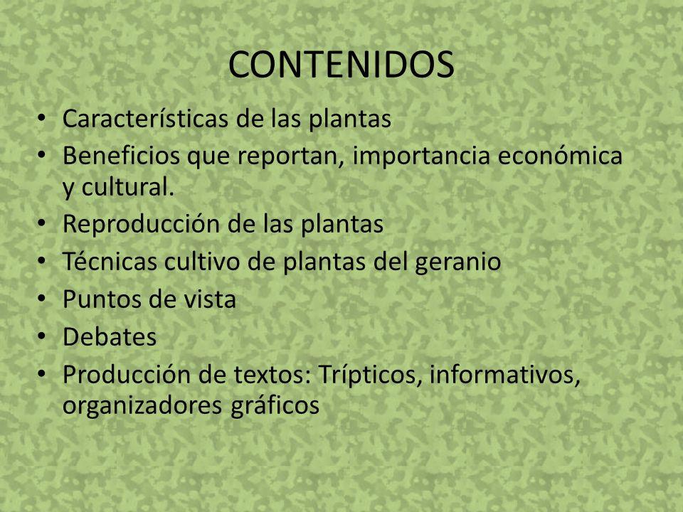 CONTENIDOS Características de las plantas