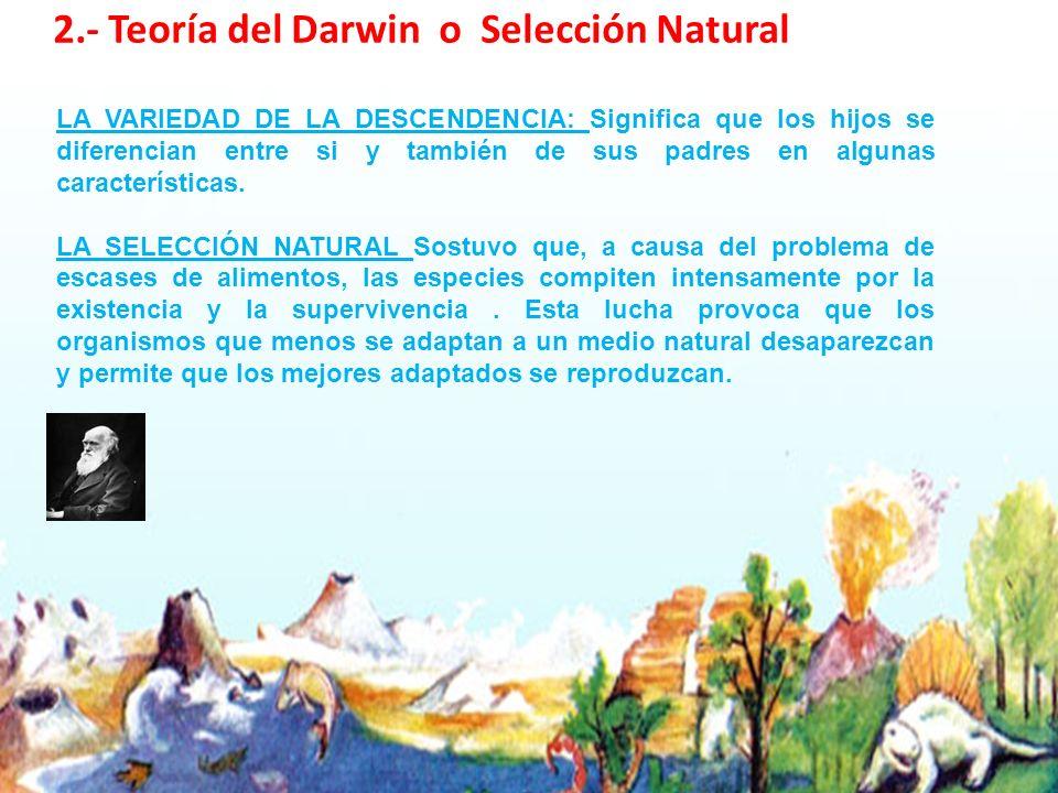 2.- Teoría del Darwin o Selección Natural