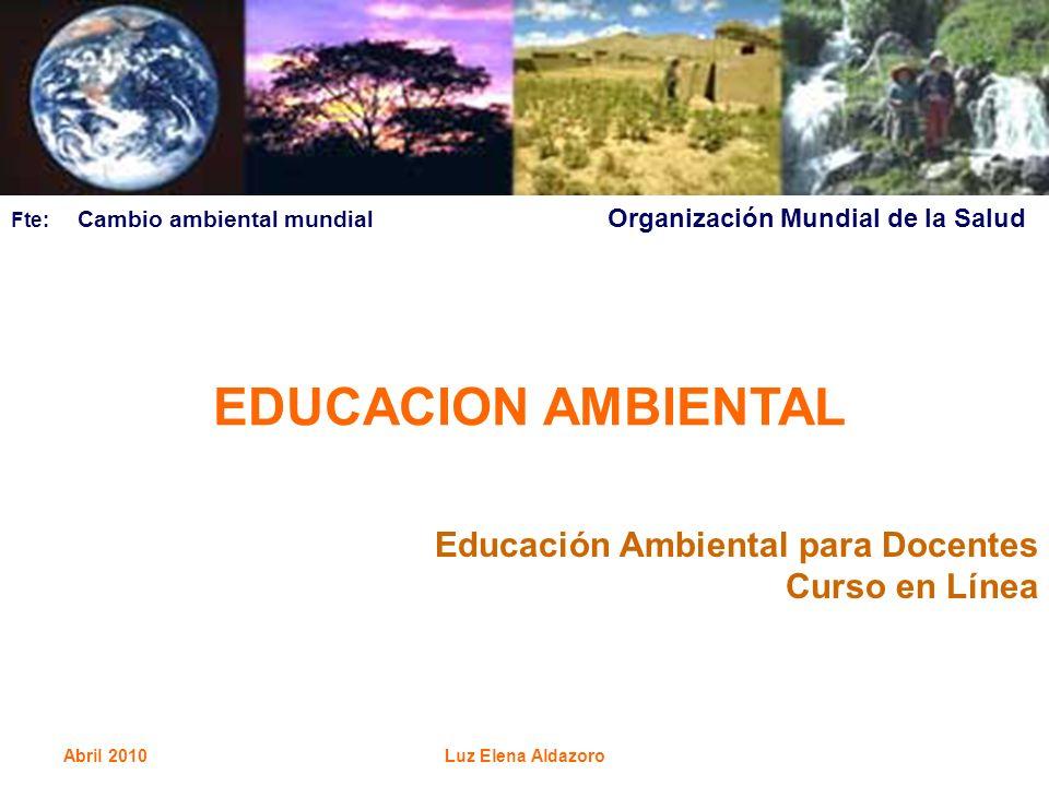 EDUCACION AMBIENTAL Educación Ambiental para Docentes Curso en Línea