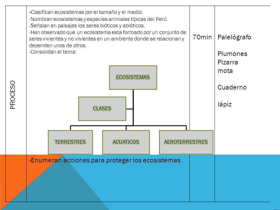 -Clasifican ecosistemas por el tamaño y el medio.