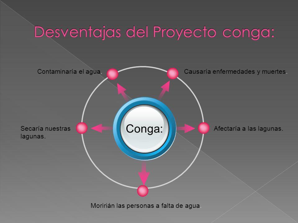 Desventajas del Proyecto conga: