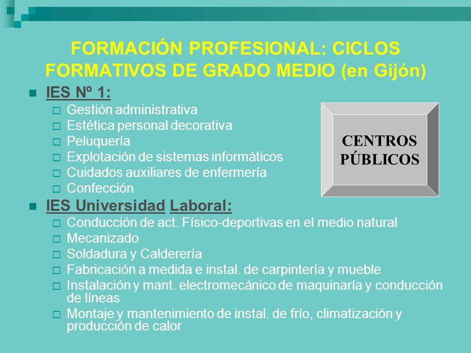 FORMACIÓN PROFESIONAL: CICLOS FORMATIVOS DE GRADO MEDIO (en Gijón)