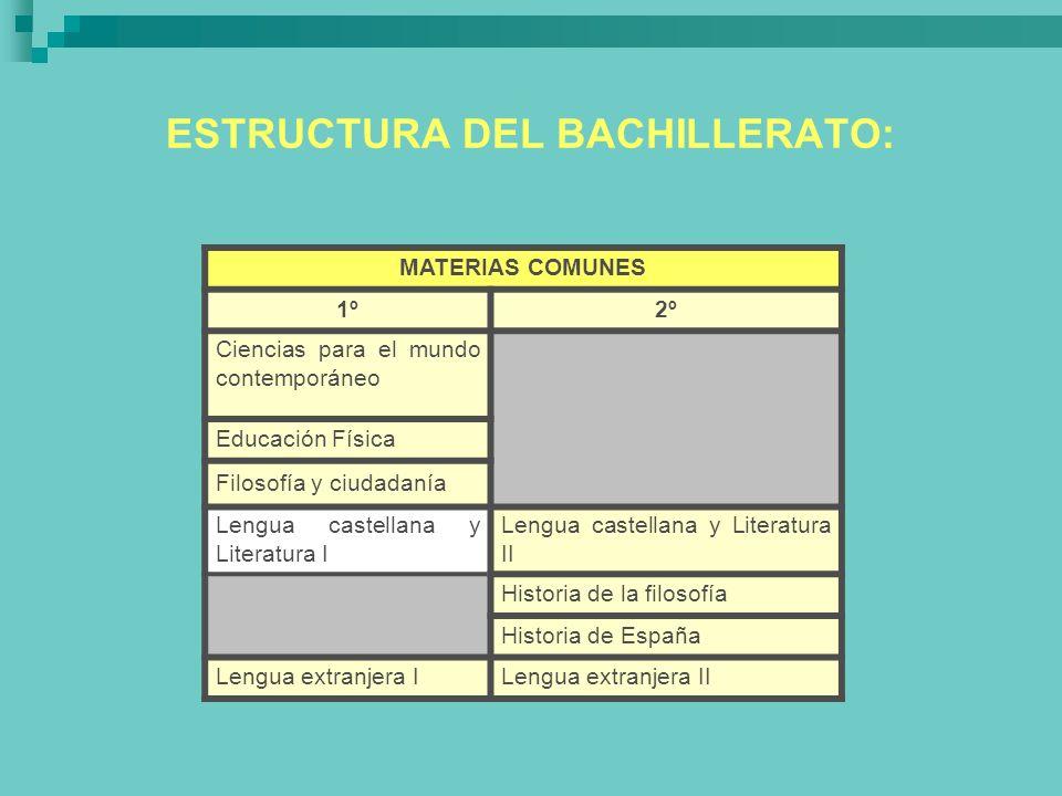 ESTRUCTURA DEL BACHILLERATO: