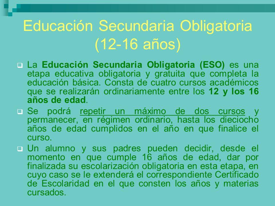 Educación Secundaria Obligatoria (12-16 años)