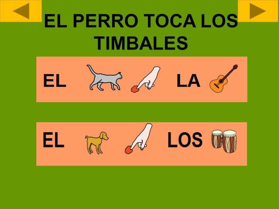 EL PERRO TOCA LOS TIMBALES