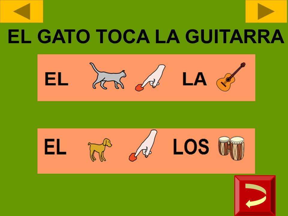 EL GATO TOCA LA GUITARRA