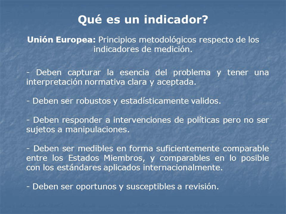 Qué es un indicador Unión Europea: Principios metodológicos respecto de los indicadores de medición.