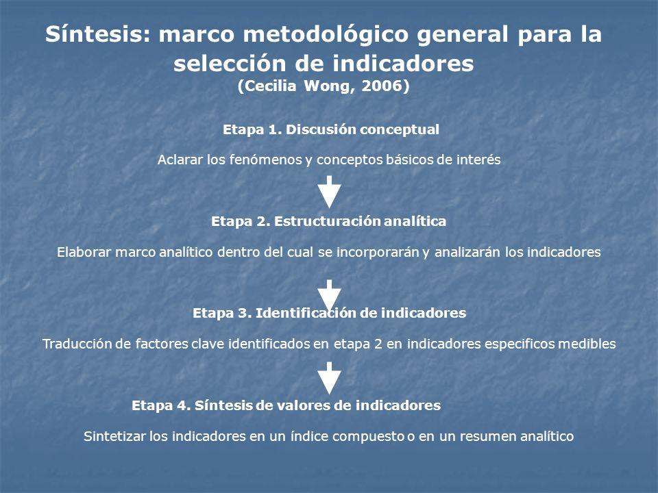 Síntesis: marco metodológico general para la selección de indicadores (Cecilia Wong, 2006)