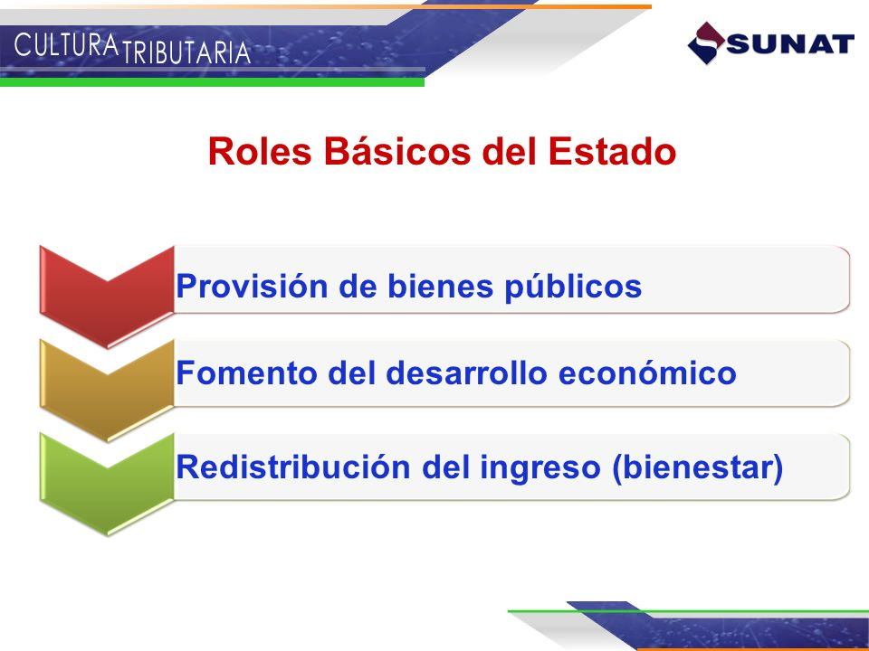 Roles Básicos del Estado