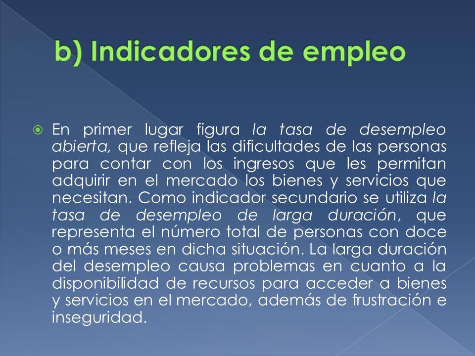 b) Indicadores de empleo