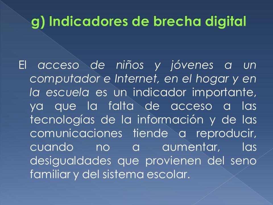 g) Indicadores de brecha digital