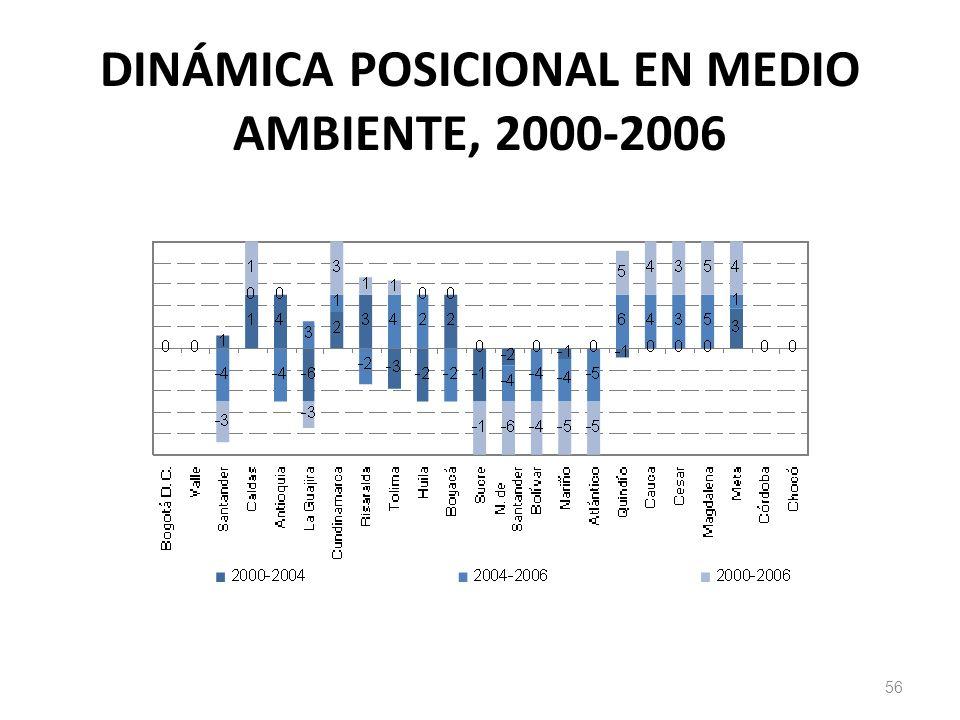 DINÁMICA POSICIONAL EN MEDIO AMBIENTE, 2000-2006