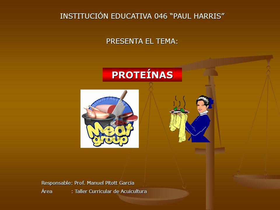 INSTITUCIÓN EDUCATIVA 046 PAUL HARRIS