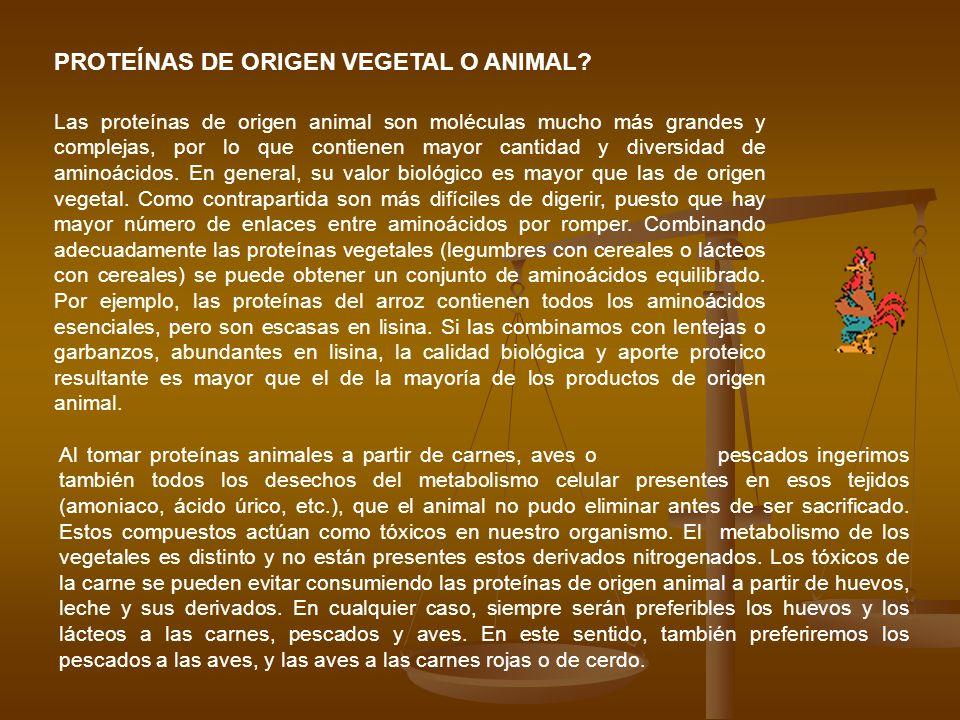PROTEÍNAS DE ORIGEN VEGETAL O ANIMAL