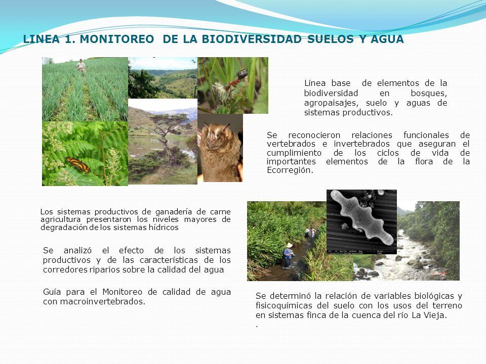 LINEA 1. MONITOREO DE LA BIODIVERSIDAD SUELOS Y AGUA