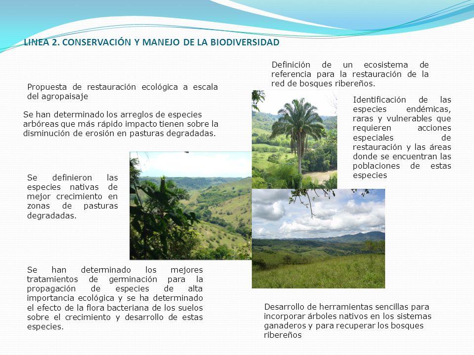 LINEA 2. CONSERVACIÓN Y MANEJO DE LA BIODIVERSIDAD