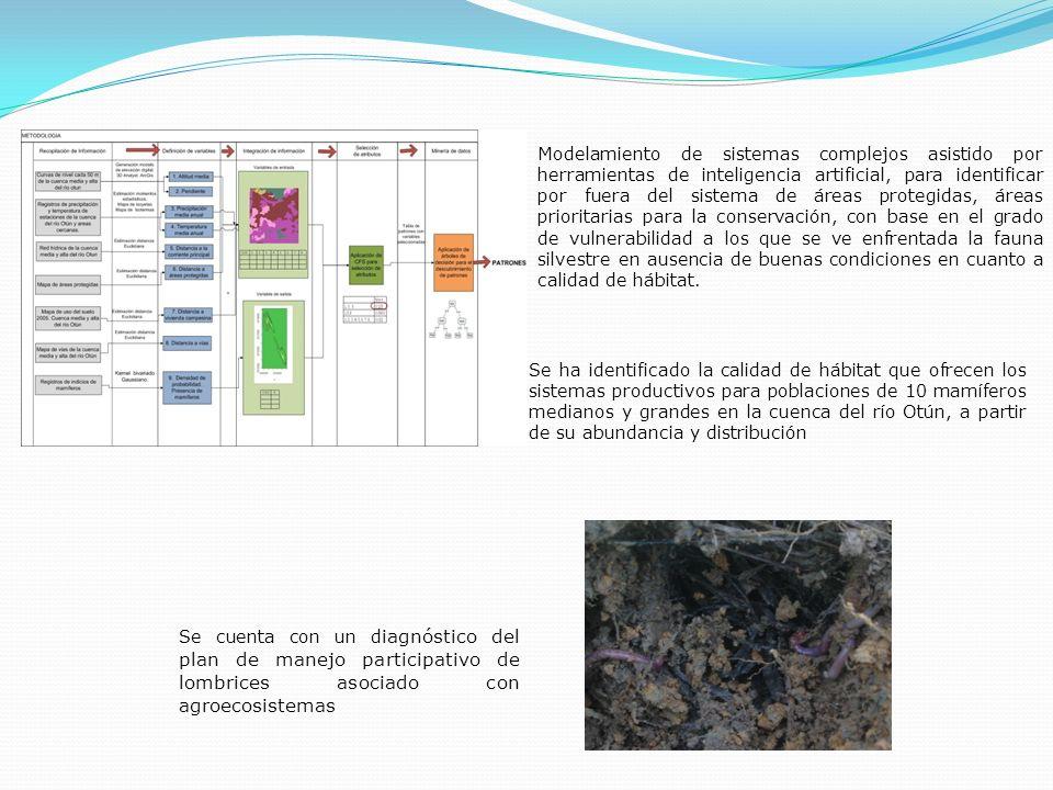 Modelamiento de sistemas complejos asistido por herramientas de inteligencia artificial, para identificar por fuera del sistema de áreas protegidas, áreas prioritarias para la conservación, con base en el grado de vulnerabilidad a los que se ve enfrentada la fauna silvestre en ausencia de buenas condiciones en cuanto a calidad de hábitat.