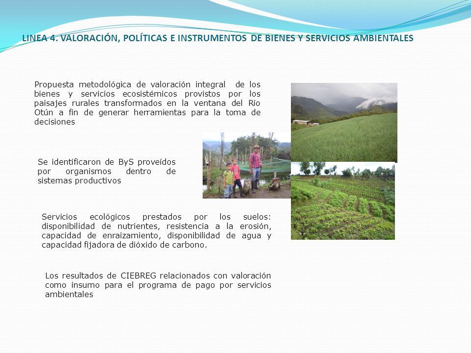 LINEA 4. VALORACIÓN, POLÍTICAS E INSTRUMENTOS DE BIENES Y SERVICIOS AMBIENTALES