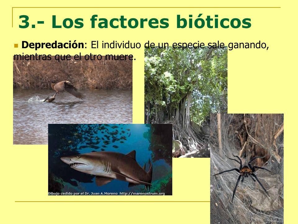 3.- Los factores bióticos