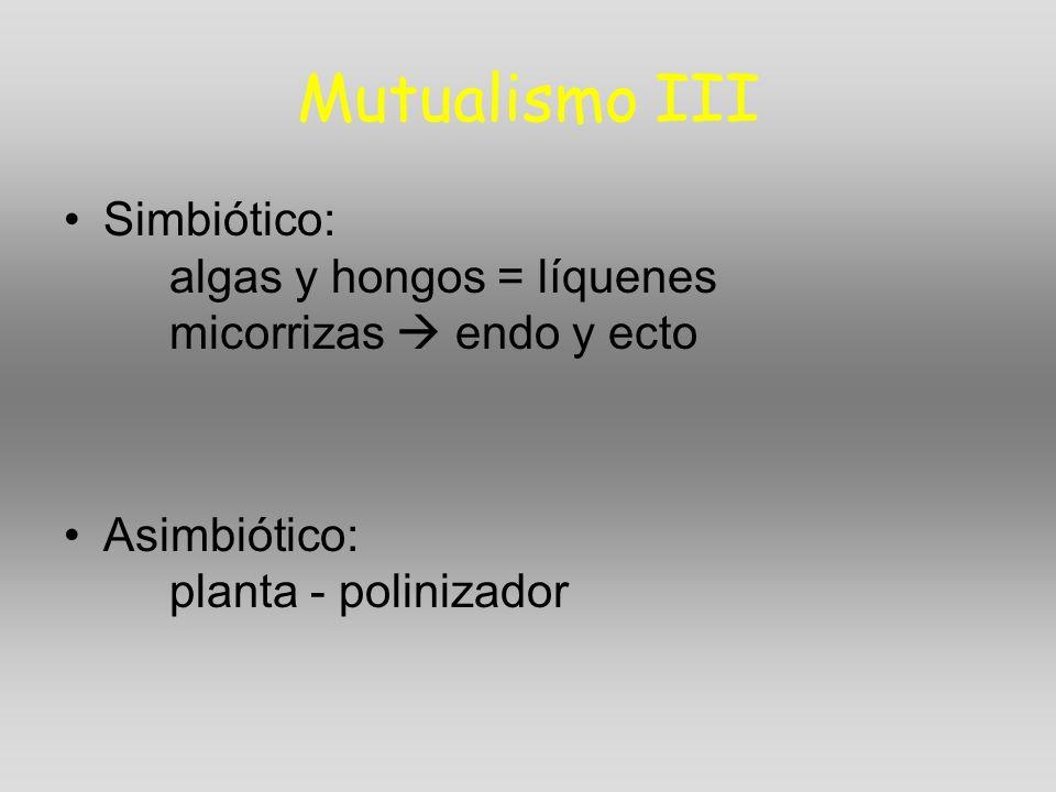 Mutualismo III Simbiótico: algas y hongos = líquenes micorrizas  endo y ecto.