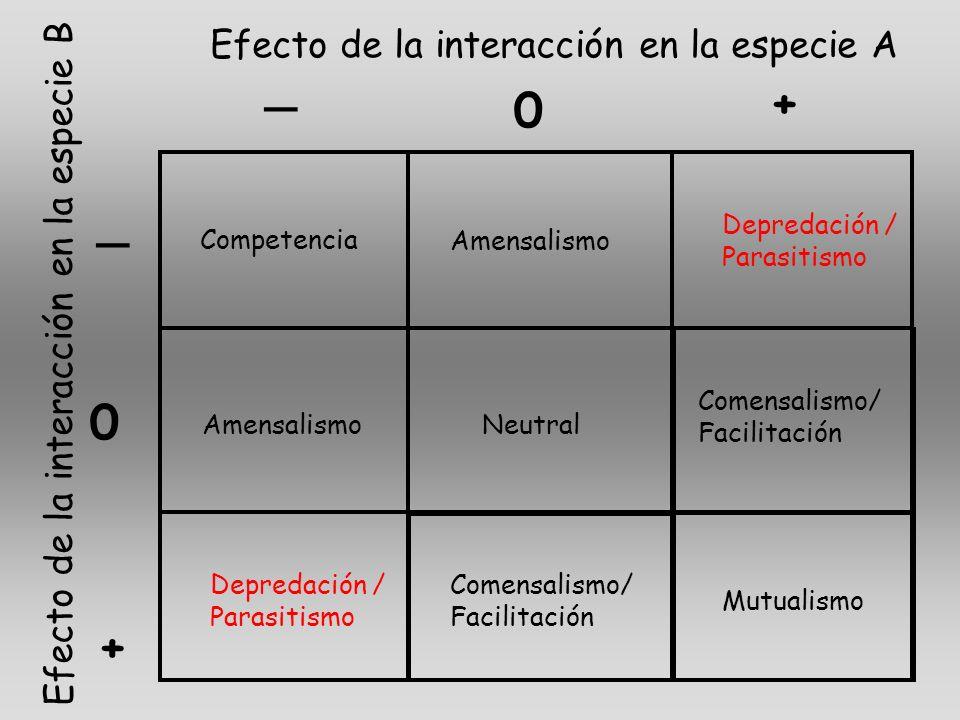 _ + _ + Efecto de la interacción en la especie A