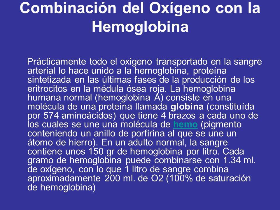 Combinación del Oxígeno con la Hemoglobina