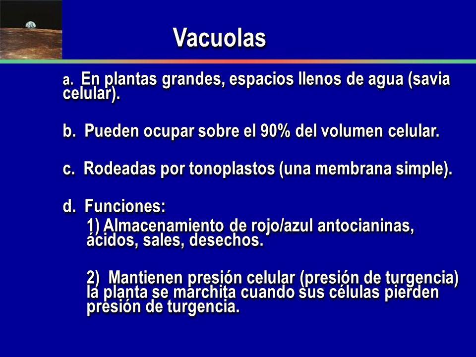 Vacuolas b. Pueden ocupar sobre el 90% del volumen celular.