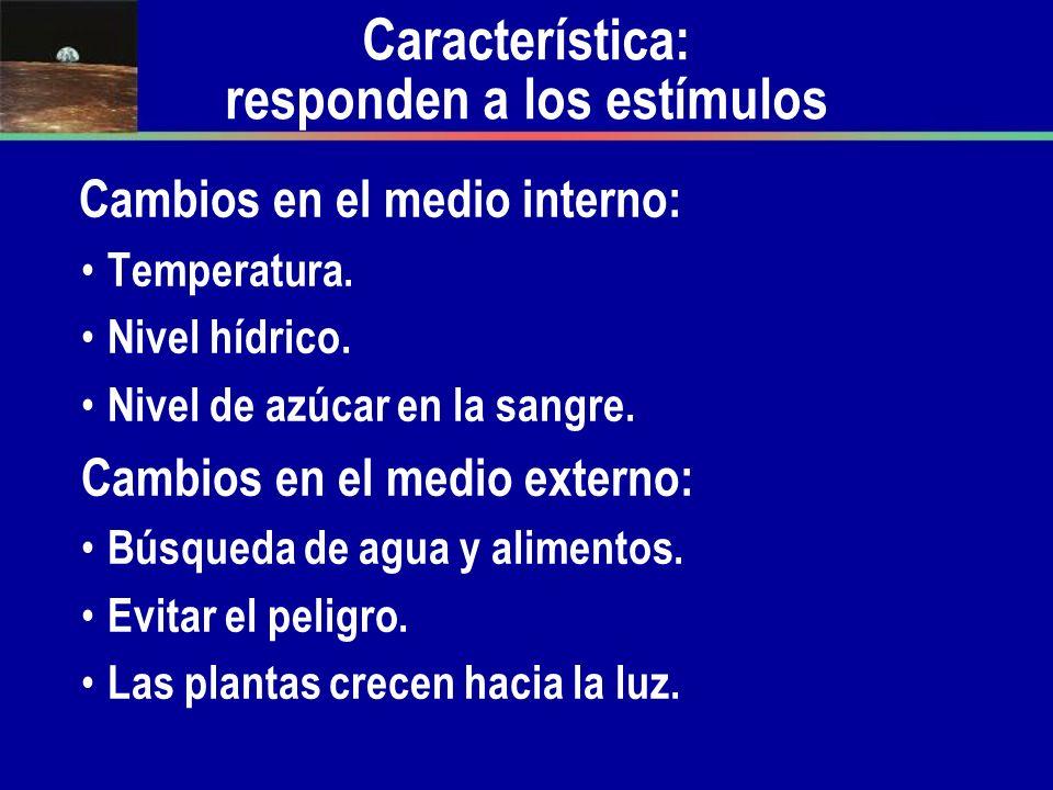 Característica: responden a los estímulos