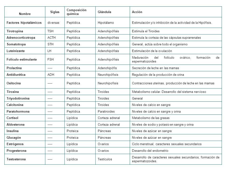 Factores hipotalámicos diversas Peptídica Hipotálamo