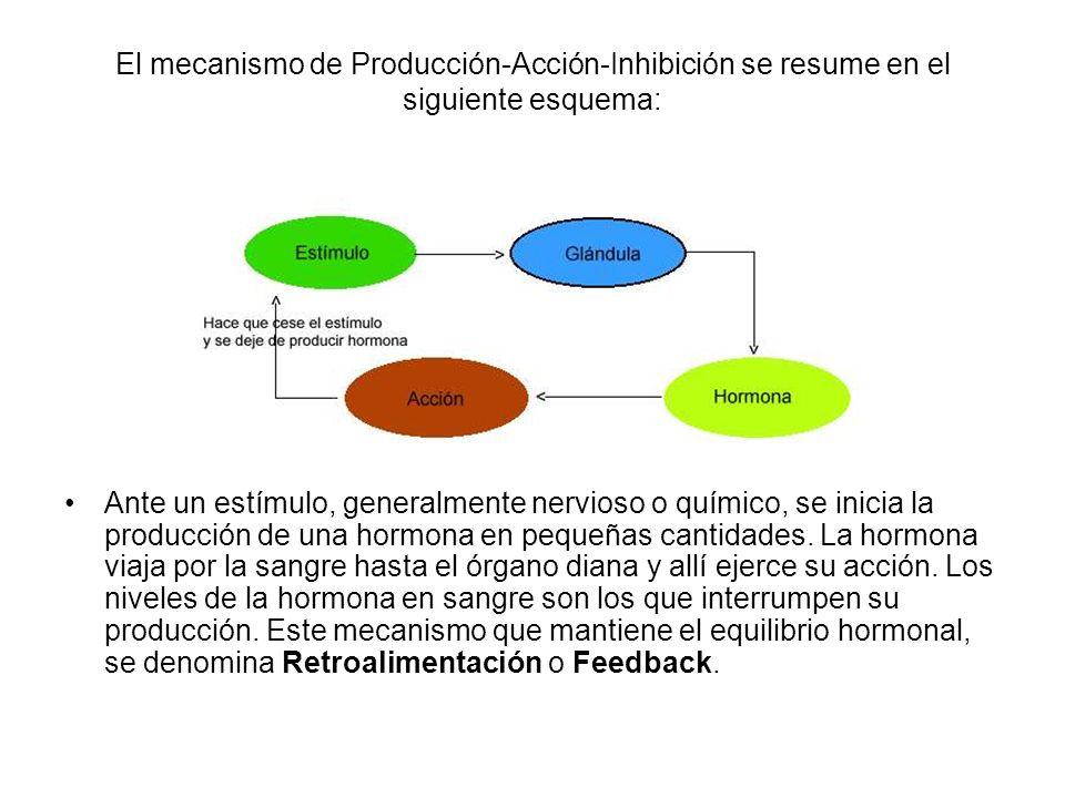 El mecanismo de Producción-Acción-Inhibición se resume en el siguiente esquema: