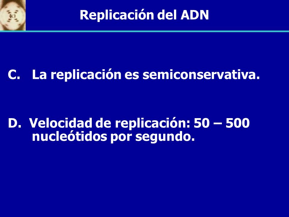 Replicación del ADNLa replicación es semiconservativa.