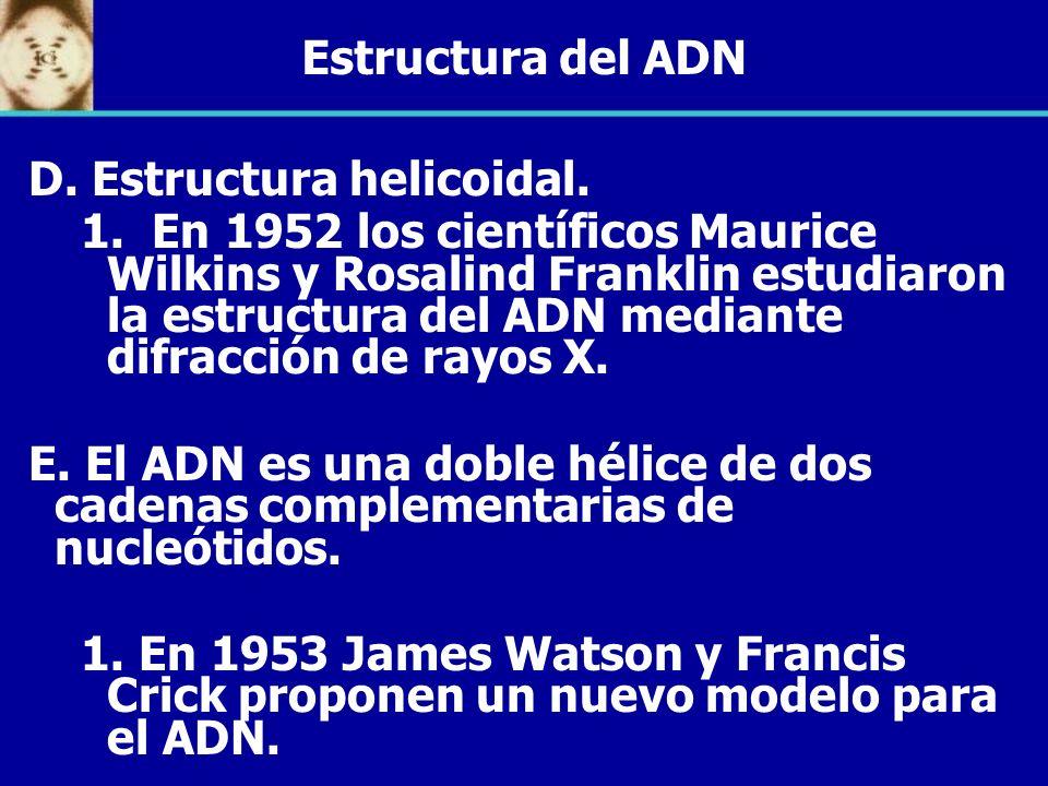 Estructura del ADN D. Estructura helicoidal.