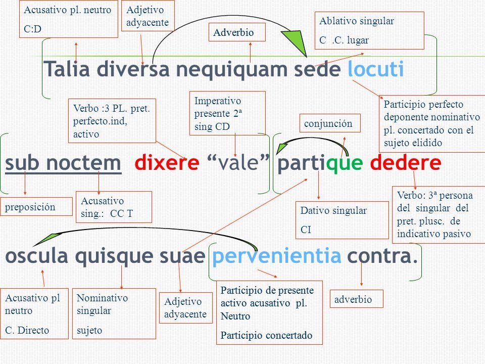 Acusativo pl. neutro C:D. Adjetivo adyacente. Ablativo singular. C .C. lugar. Adverbio. Adverbio.